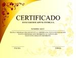Diploma 153-7