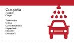 Lavado de Autos 151-1220